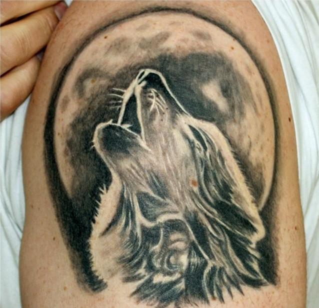 Qu Est Ce Qu On Entend Par Tatouer Un Loup Et Des Arbres